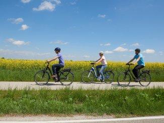 Der Biotoperlebnispfad in Ingolstadt ist elf Kilometer lang