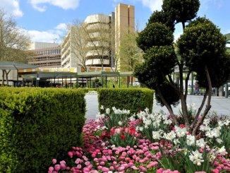 Seit 1982 in Betrieb: das Klinikum Ingolstadt